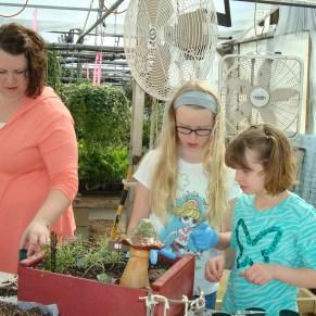 fairy gardens 097