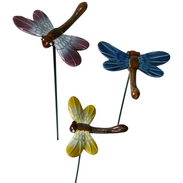 53122Dragonflies1-2